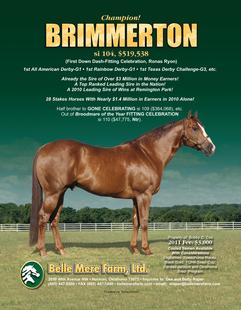 Brimmerton
