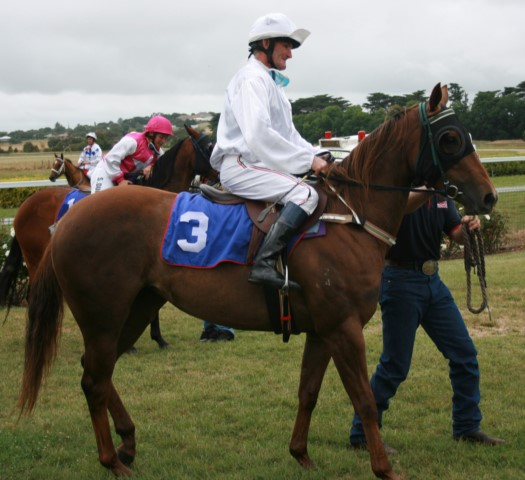 Candy (Destinys Fulfilled) at the Terang Sprint Races.