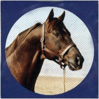 Scoutleader, sire of Trippy Dip (Bold Ruler x Polylady, Polynesian